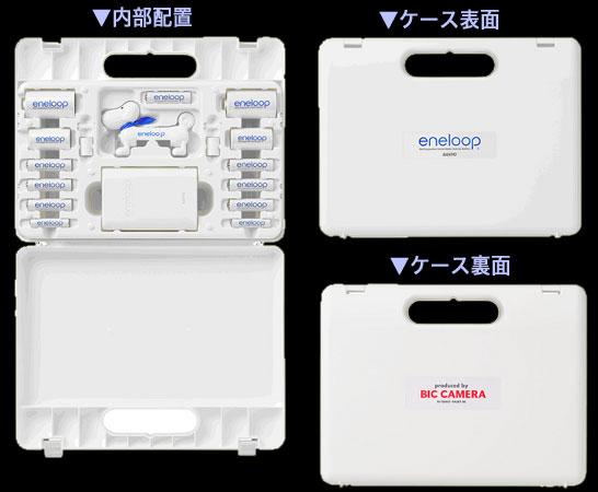 bic_case2.jpg