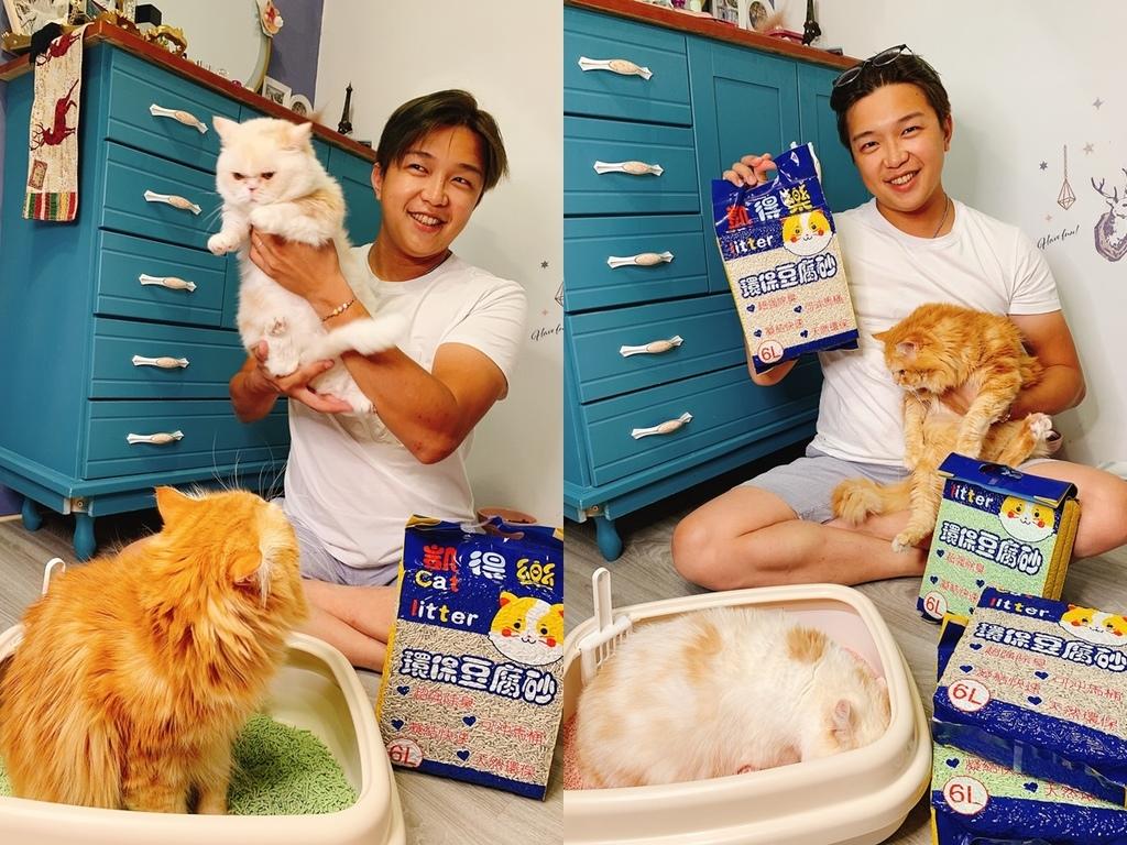 cats222220.jpg