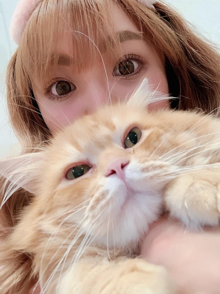 貓沐浴乳_汪汪寶貝  (2).jpg