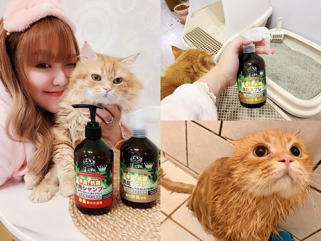 貓沐浴乳_汪汪寶貝.jpg