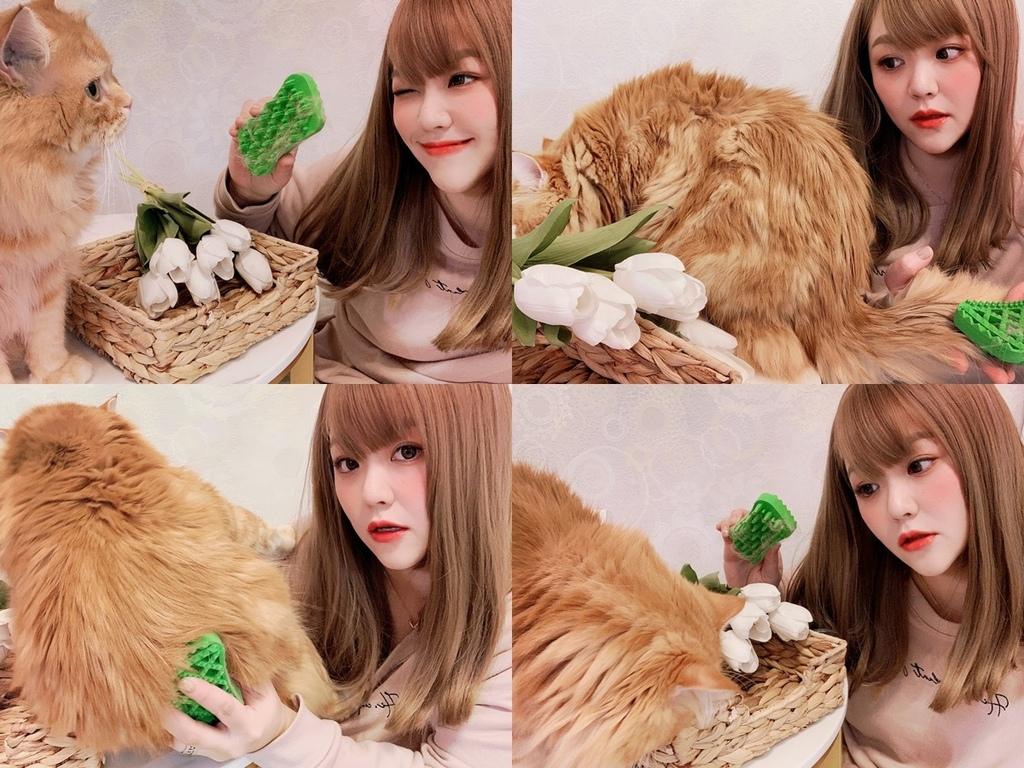 pet+me寵物按摩梳.jpg