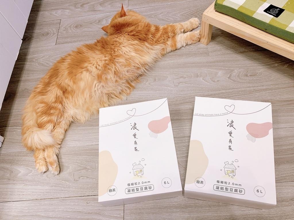 浪愛有家 貓奴狗僕 豆腐貓砂 (20).jpg