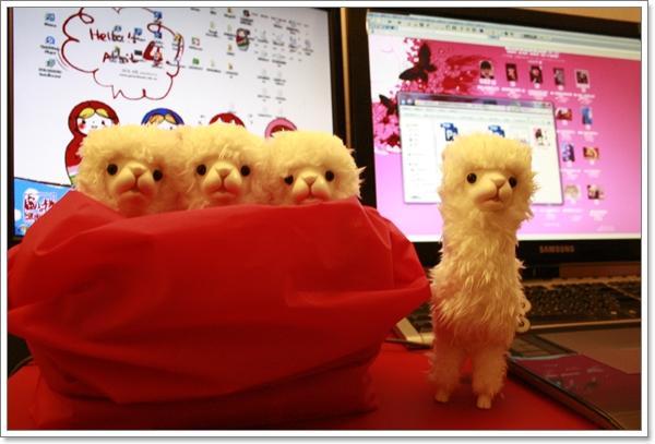 小羊駝戰隊!