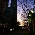 我喜歡東京詭譎的黃昏。