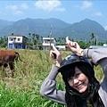 牛!我是牛!