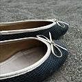 我的小芭蕾舞鞋跟我南征北討。