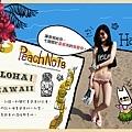 夏威夷觀光大使。