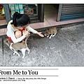 0712,貓子貓子,我愛貓子!(心)