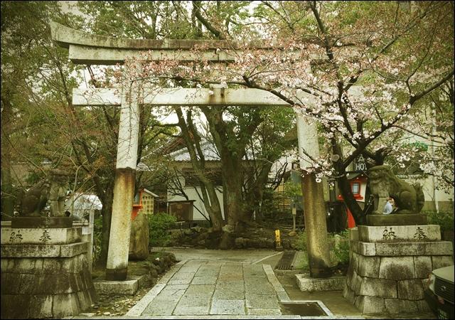 安井金比羅宮peachnote (5).jpg