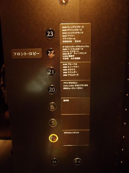 P4082384.JPG
