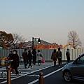 DSC_6961.JPG
