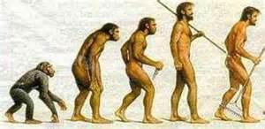 進化史.jpg