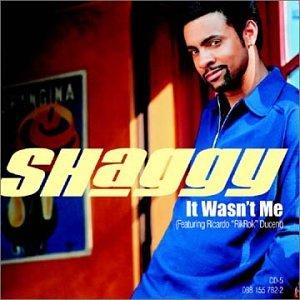 Shaggy - It Wasn_t Me