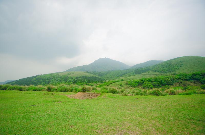 陽明山擎天崗草原