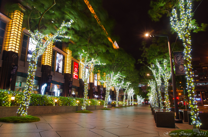 台北信義區夜景聖誕燈飾_台北101