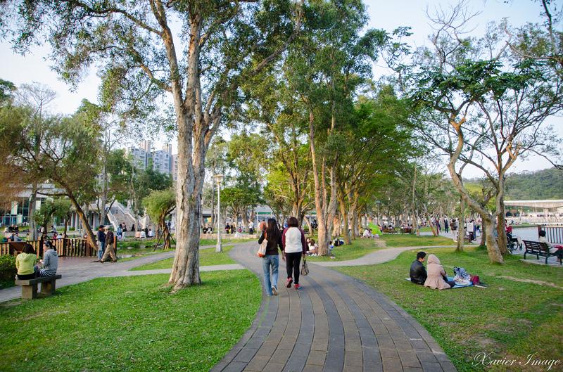 大湖公園 6