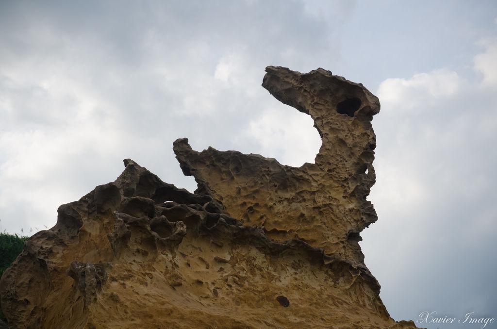 野柳地質公園_第三區瑪伶鳥石
