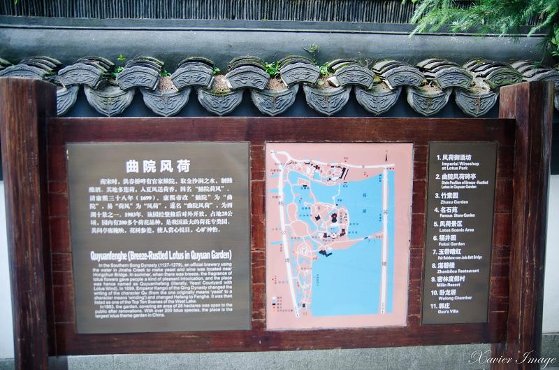 杭州西湖十景_曲院風荷 13