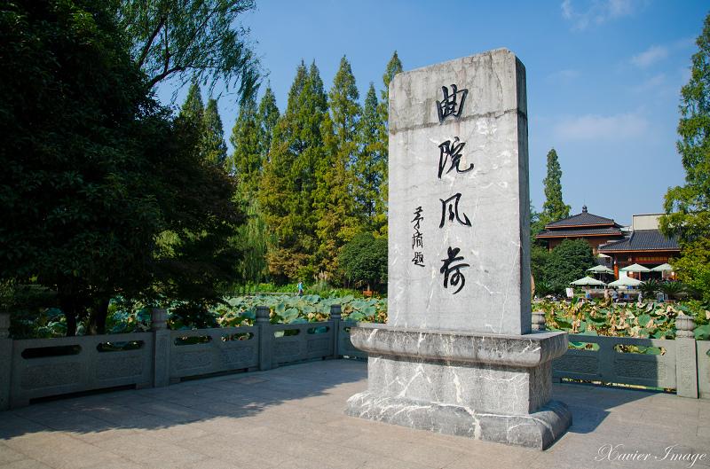 杭州西湖十景_曲院風荷 6