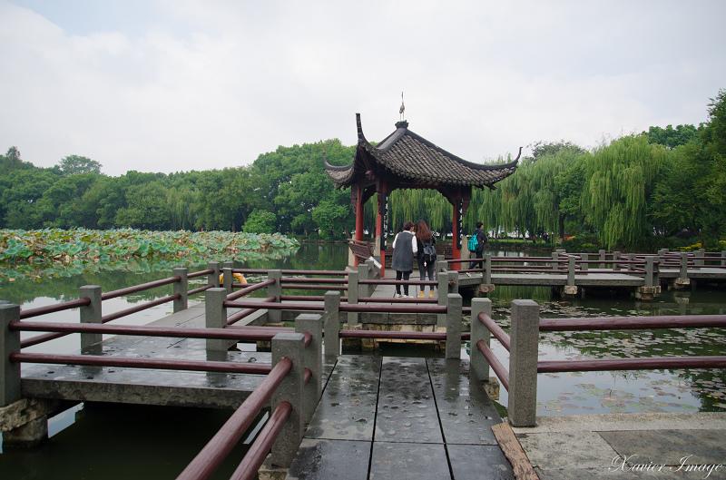 杭州西湖三潭印月_九曲橋 2