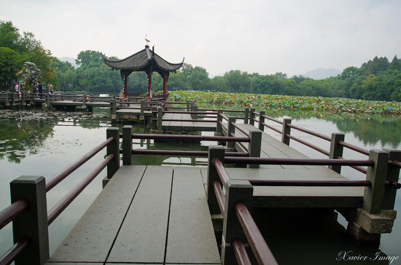 杭州西湖三潭印月_九曲橋