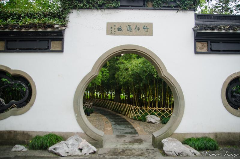 杭州西湖三潭印月_竹徑通幽