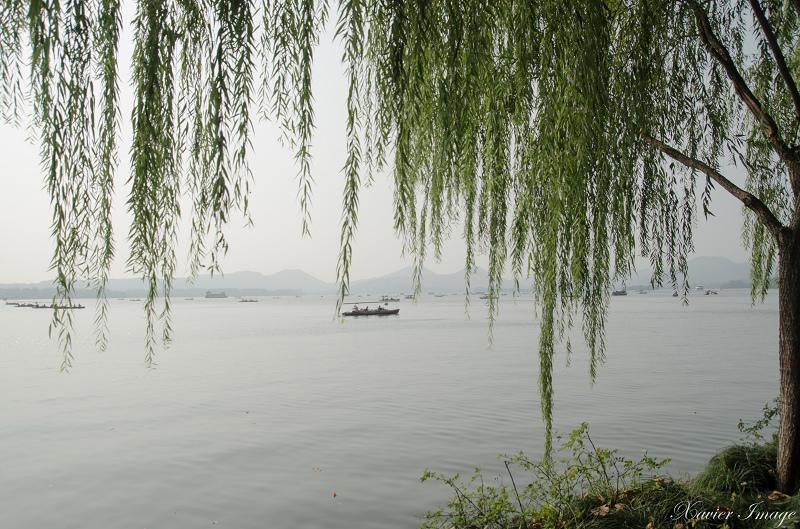 杭州西湖_北山路垂柳 2