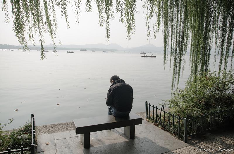 杭州西湖_北山路垂柳