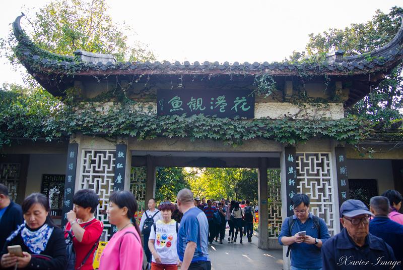 杭州西湖十景_花港觀魚 2