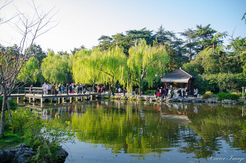 杭州西湖十景_花港觀魚_紅魚池 3