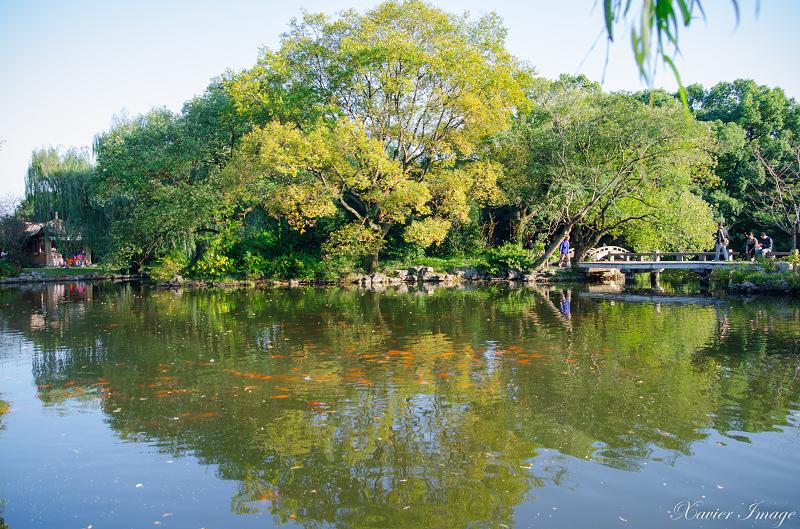 杭州西湖十景_花港觀魚_紅魚池