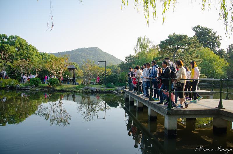 杭州西湖十景_花港觀魚_紅魚池 5