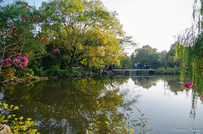 杭州西湖十景_花港觀魚_紅魚池 7