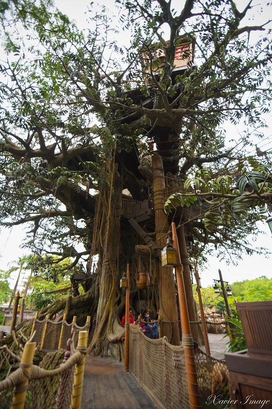 香港迪士尼樂園_探險世界_泰山樹屋