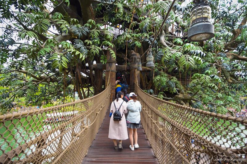 香港迪士尼樂園_探險世界_泰山樹屋 2