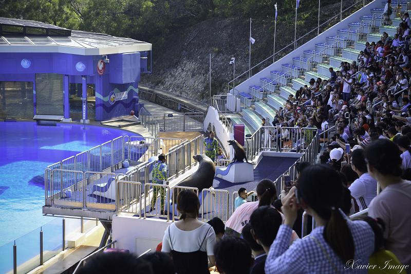 香港海洋公園_海洋劇場 3