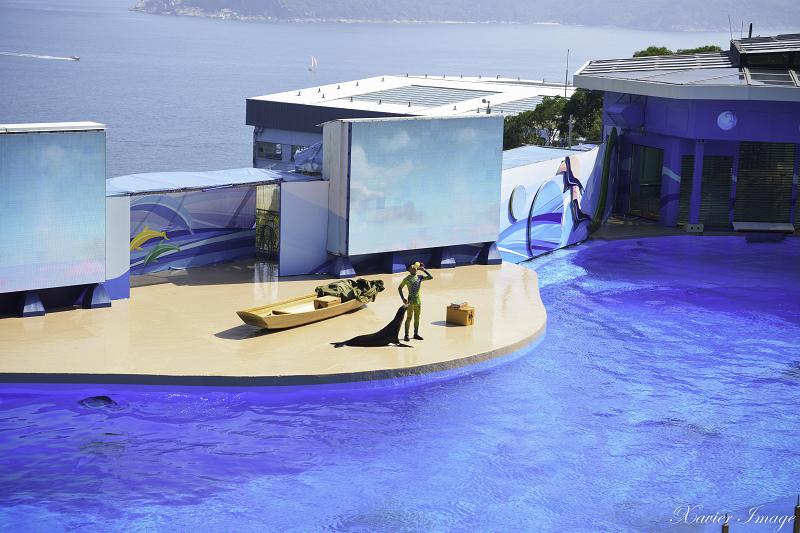 香港海洋公園_海洋劇場 5