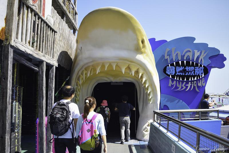 香港海洋公園_尋鯊探秘 2