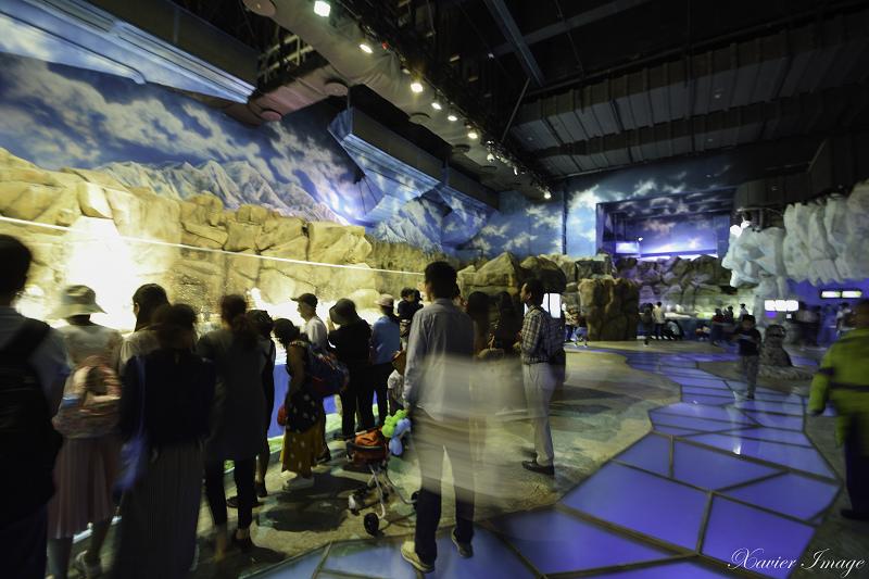 香港海洋公園_南極奇觀 3