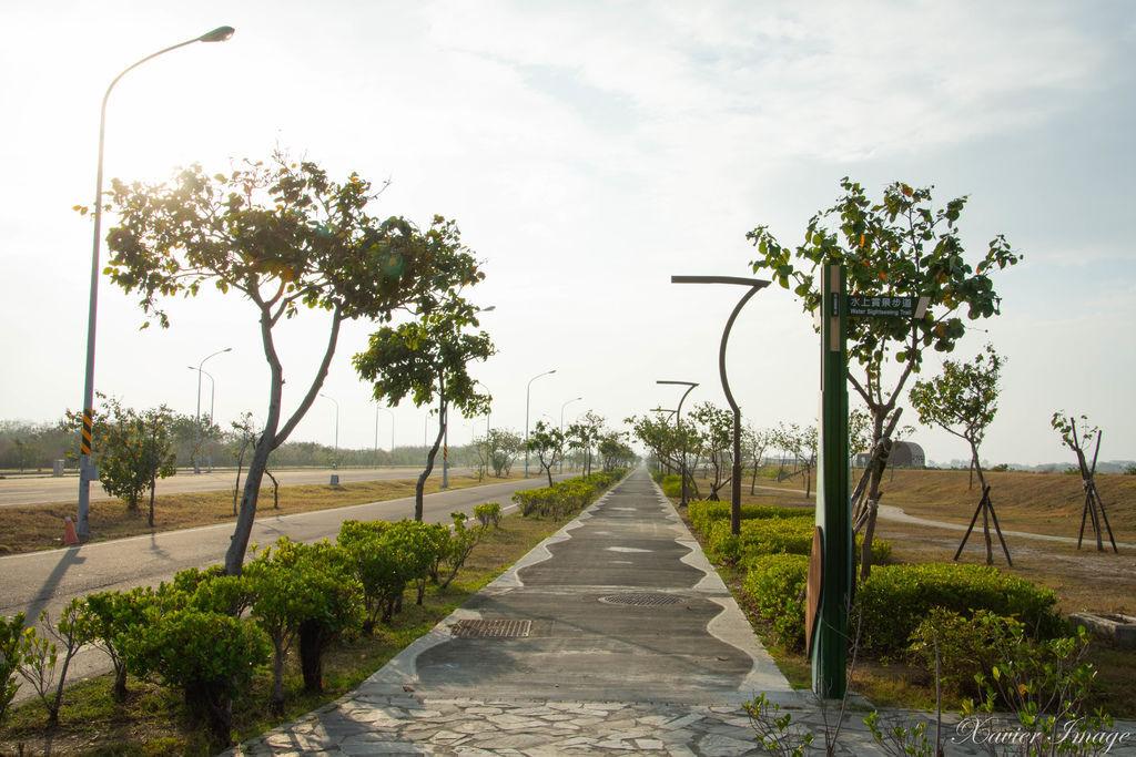 高雄茄萣濕地公園_水上實景步道