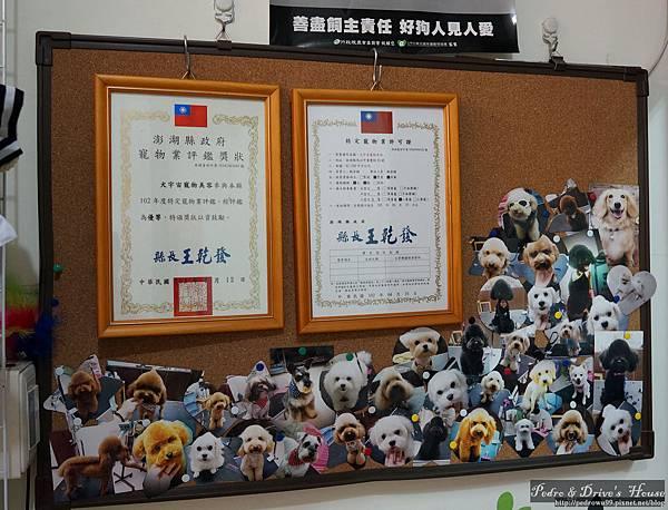澎湖旅遊pedro0352.jpg