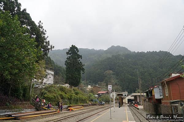 台灣旅遊pedro0342.jpg