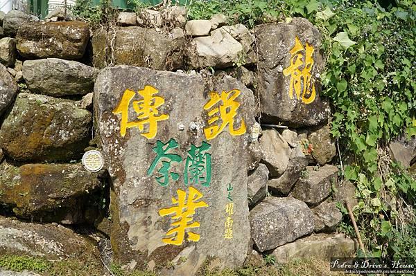 台灣旅遊pedro0363.jpg