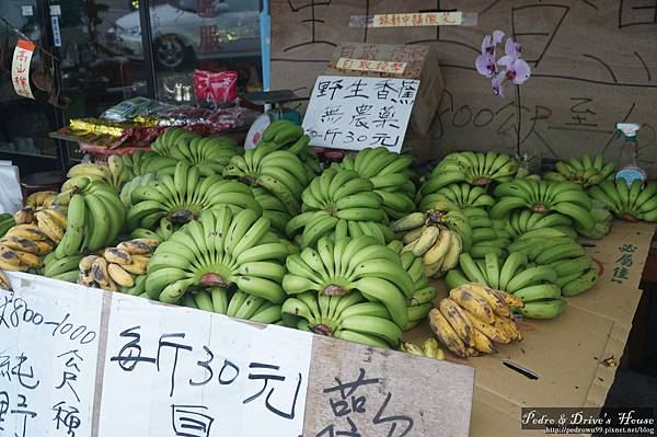 台灣旅遊pedro0366.jpg