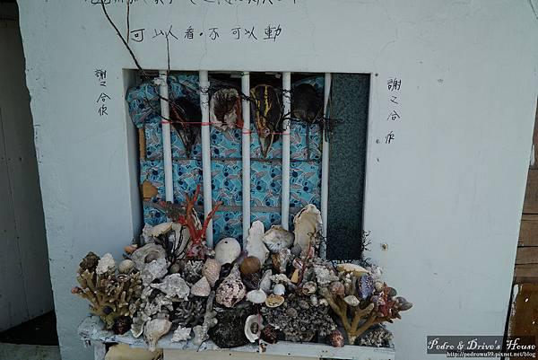 澎湖旅遊-pedro-0089.jpg