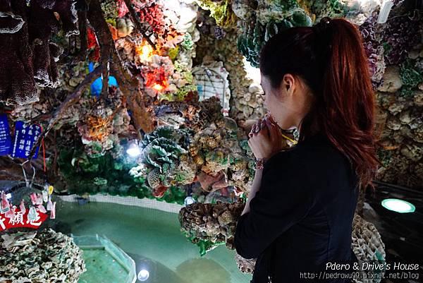 澎湖旅遊-pedro-0100.jpg