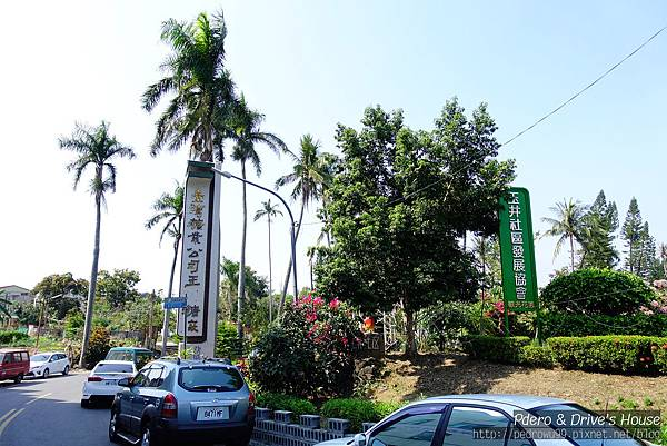 台南旅遊-pedro-0668.jpg