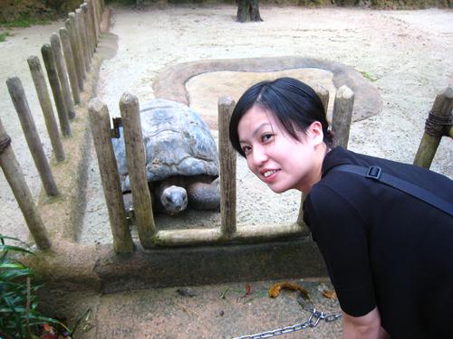 20070916 新加坡動物園-龜&蘭