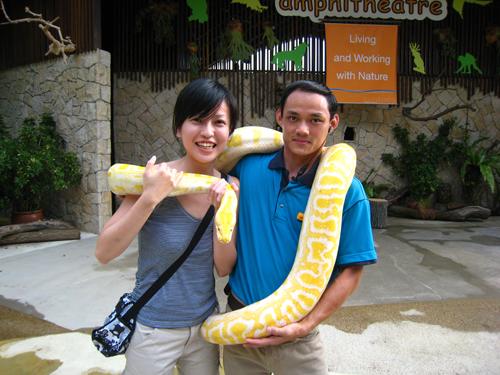 20070917 聖淘沙動物樂園-蘭抱蟒蛇