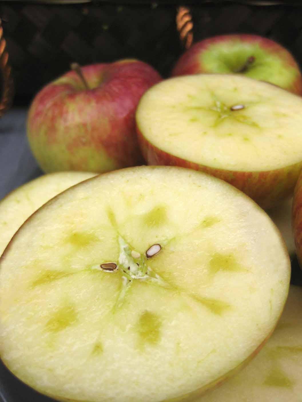 好吃的蘋果~~~
